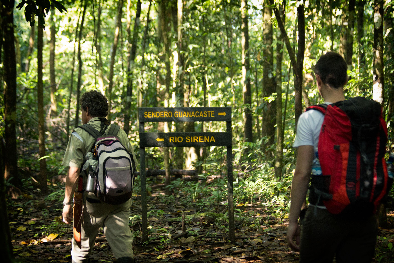 Costa Rica - Randonnée dans le parc du Corcovado avec un guide naturaliste