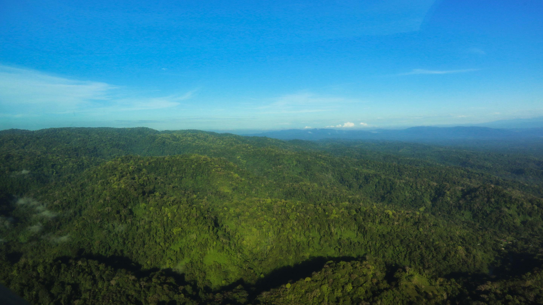 Costa Rica - Survol du parc du Corcovado