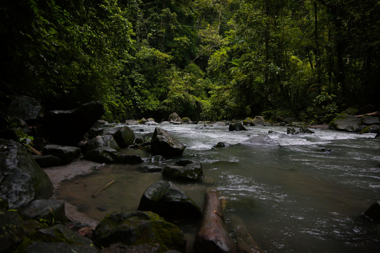 Costa Rica - Riviere la Fortuna