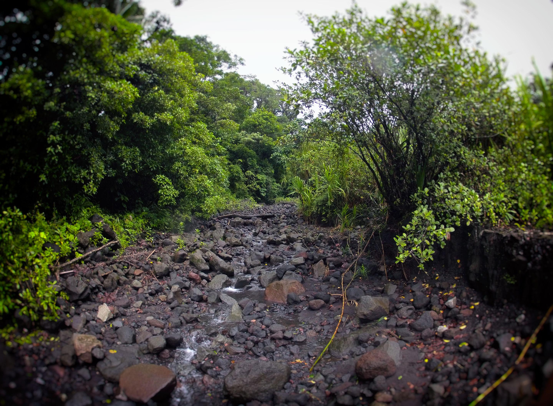 Costa Rica - Coulée de lave volcan Arénal